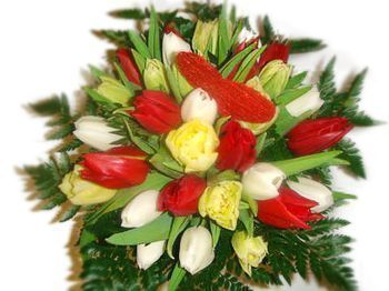 Bouquet de tulipes multicolres